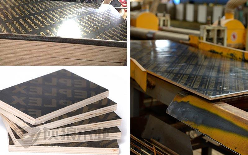 灰狼牌木模板生产实拍2