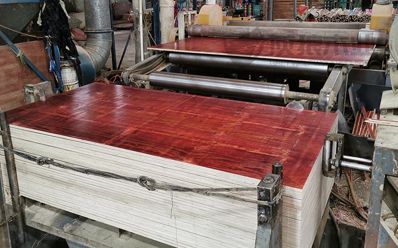 灰狼木业建筑木模板